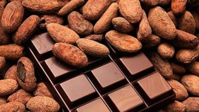 Photo of Agro-industrie :Atlantic Group veut booster la transformation du cacao camerounais