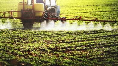 Photo of Développement : l'agro-industrie de toutes les attentes