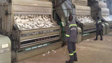 Photo of Filière coton: environ deux milliards FCFA de fonds des producteurs détenus à la Sodecoton