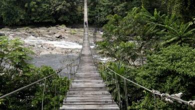 Photo of Tourisme: de belles perspectives pour le tourisme d'affaires au Cameroun