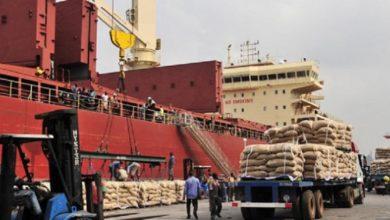 Photo of Poissons, riz, parfums, boissons…   le Cameroun a importé pour 9634 milliards en trois ans