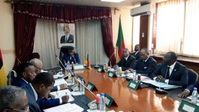 Photo of Balance commerciale: comment réduire les importations du Cameroun ?
