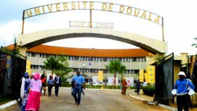 Photo of Classement 2019: les universités du Nord-Ouest et du Sud-Ouest en chute libre
