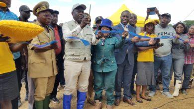 Photo of RSE : MTN appuie les jeunes agriculteurs de Nlobesse dans le Sud