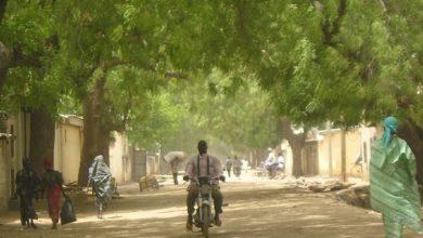 Photo of Développement local : plus de 4 milliards de FCFA pour l'Extrême-Nord