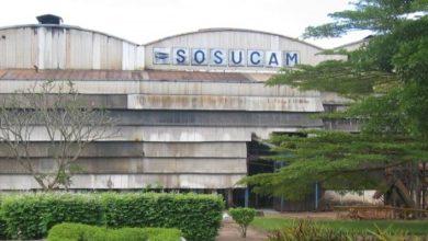 Photo of Agro-industrie : les employés de Sosucam reçoivent une majoration de 10%  sur le salaire