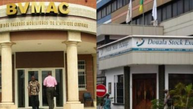 Photo of Marché financier : la difficile parturition de la Bourse de la Cemac