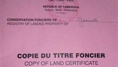 Photo of Climat des affaires : le foncier, une entrave à l'attractivité du Cameroun