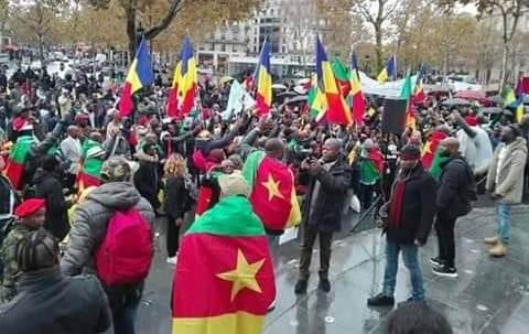 Grand dialogue national : comment la diaspora camerounaise peut participer  - EcoMatin