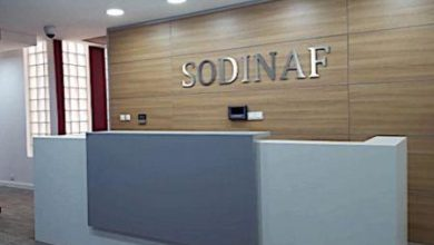 Photo of Huilerie/savonnerie : Sodinaf investit 14 milliards FCFA