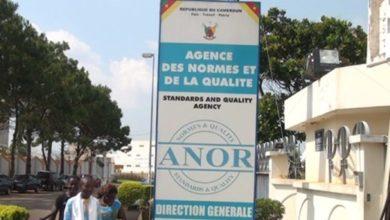 Photo of Qualité : 2 732 normes déjà établies au Cameroun