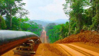 Photo of ExxonMobil et Petronas veulent quitter le pipeline Tchad-Cameroun