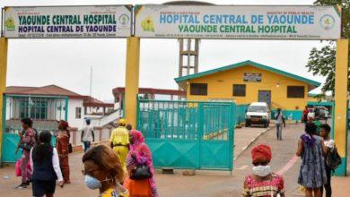 Photo of Coronavirus : 1430 cas confirmés et 43 décès au Cameroun
