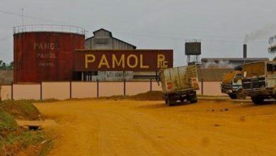 Photo of Pamol Plantations veut booster sa production à 28 000 tonnes