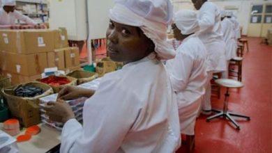 Photo of Fête du travail : près de 15% d'entreprises n'ont pas de comité d'hygiène et de sécurité