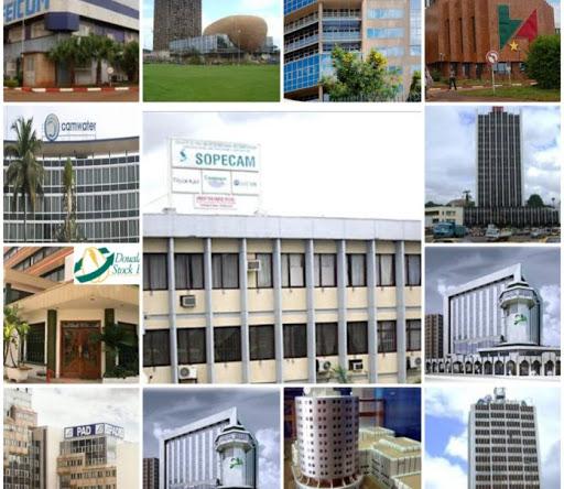 Entreprises publiques Camerounaises