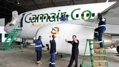 Photo of Camair-co : les employés broient du noir
