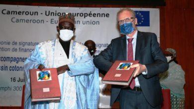 Photo of Cameroun-UE 10 milliards de FCFA pour la filière coton