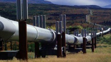 Photo of Le droit de transit sur le Pipeline Cameroun-Tchad s'élève à 15,7 milliards de F au 31 mai 2020