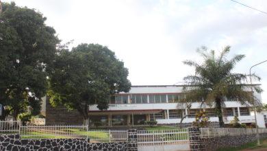 Photo of Centres de gestion agréés : une mine d'or sous-exploitée