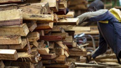 Photo of Filière bois : 15,9 millions pour former les artisans