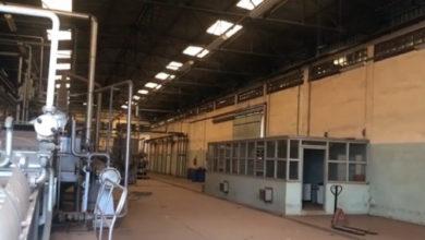 Photo of Relance de la filière tomate : espoirs et spéculations autour de l'usine de Foumbot