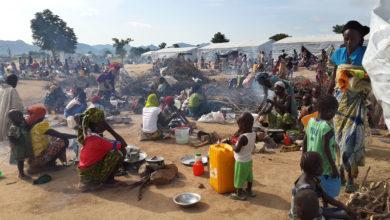 Photo of Près de 4 millions de personnes exposés à l'insécurité alimentaire au Cameroun